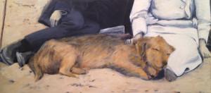beach dog 2
