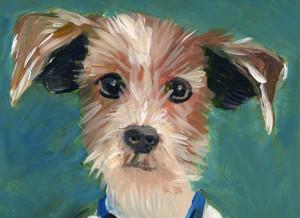 dog-Vincent I